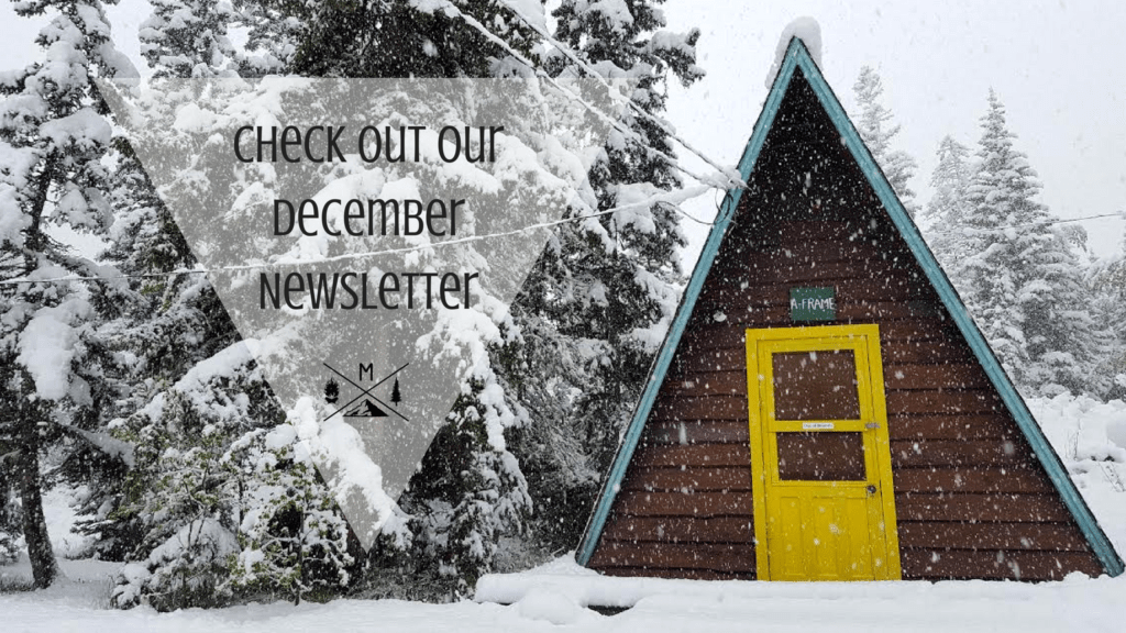 check-out-our-december-newsletter